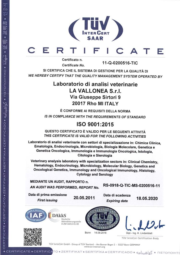 CERTIFICATO UNI EN ISO 9001:2008